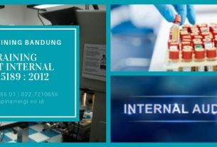 Training Audit Internal ISO 15189 2012