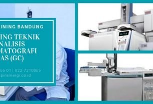 Training Teknik Analisis Kromatografi GAS (GC)