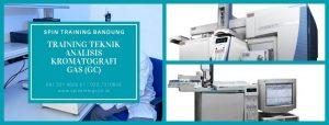 Training Teknik Analisis Kromatografi GAS (GC)
