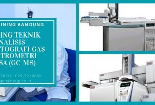 Training Teknik Analisis Kromatografi Gas Spektrometri Massa (GC-MS)